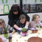 Dzieci sadzą sadzonki do doniczek.