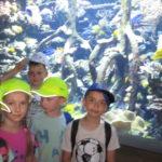 Dzieci na tle akwarium.