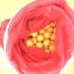 mikołajkowe mandarynki