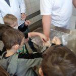 Dzieci obserwują pracę piekarza.